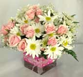 PINK POLKA DOT & POSIES by Rubrums in Ossining NY, Rubrums Florist Ltd.