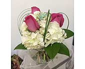 Elegantly Cute in Melbourne FL, Paradise Beach Florist & Gifts