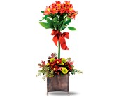 Teleflora's Rustic Garden Bouquet in Oshkosh WI, Hrnak's Flowers & Gifts