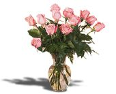 Roses from the Heart in Broomall PA, Leary's Florist