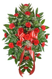 Red Carnation Standing Spray in Indianapolis IN, Steve's Flowers and Gifts