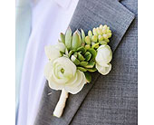 Ranunculus and succulent boutonni�re in Ammon ID, Petal Passion