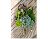 Succulent Bout with Jute Wrap in Ammon ID, Petal Passion