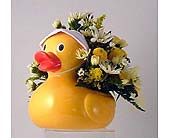 Just Ducky in Salisbury MD, Kitty's Flowers