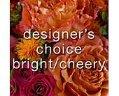 Designer's Choice Bright/Cheery in Ammon ID, Petal Passion