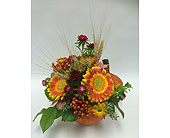 Pumpkin Tabletop Orange in Belleville ON, Live, Love and Laugh Flowers, Antiques and Gifts