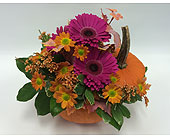 Pumpkin Tabletop Pink in Belleville ON, Live, Love and Laugh Flowers, Antiques and Gifts
