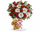 Send a Hug I Ruff You by Teleflora in Orlando, Florida, Elite Floral & Gift Shoppe