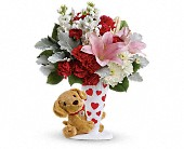 Send a Hug You're Fur Me by Teleflora in Scobey MT, The Flower Bin
