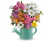 Teleflora's Send a Hug Tweet Tweet Bouquet in New Britain CT, Weber's Nursery & Florist, Inc.