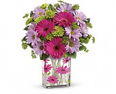 Teleflora's Thanks A Daisy Bouquet in Ammon ID, Petal Passion