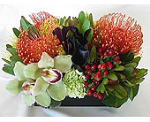 Protea and Orchids in Carlsbad CA, El Camino Florist & Gifts