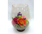 Fresh Terrarium in Belleville ON, Live, Love and Laugh Flowers, Antiques and Gifts