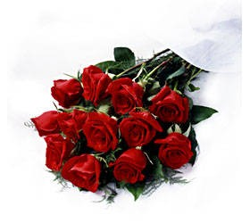 Dozen Roses Wrapped  in Mississauga ON, Flowers By Uniquely Yours