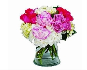 Soft & Sweet in Hollywood FL, Al's Florist & Gifts