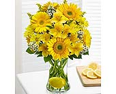 Make Lemonade in a Vase in Hillsboro OR, Marilyn's Flowers