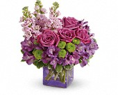 Teleflora's Sweet Sachet Bouquet in Canton NY, White's Flowers