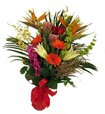 Maui Cut Flower BouquetBuying exotic flowers, show in Edmonton AB, Flowers By Merle