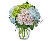 Southern Charm in Bradenton FL, Florist of Lakewood Ranch