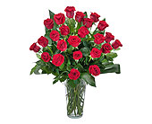 Grand Roses - 2 Dozen Roses in Latham NY, Fletcher Flowers