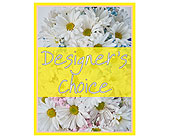 Designer's Choice - New Baby in Prospect KY, Country Garden Florist