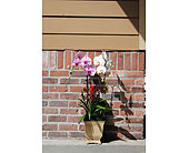 Charming Flowers in Rowland Heights CA, Charming Flowers