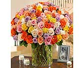 100 Premium Long Stem Multicolored Roses in a Vase in Hillsboro OR, Marilyn's Flowers