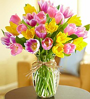 Timeless Tulips in Silver Spring MD, Colesville Floral Design