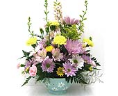 FF150 ''Daisy Colander'' in Oklahoma City OK, Array of Flowers & Gifts