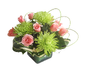 Roses and Pearls in Villa Park IL, Ardmore Florist