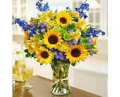Fields of Europe� for Summer in Hillsboro OR, Marilyn's Flowers
