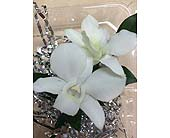 White Orchid Boutonniere in Palm Beach Gardens FL, Floral Gardens & Gifts