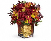 Teleflora's Maple Leaf Bouquet in Seattle WA, Hansen's Florist