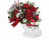 Send a Hug Open Sleigh Ride by Teleflora in Oakland CA, Lee's Discount Florist