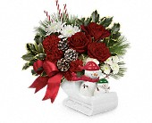 Send a Hug Snow Much Fun by Teleflora in Seattle WA, The Flower Lady