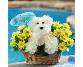 Beach Doggie in Aston PA, Wise Originals Florists & Gifts