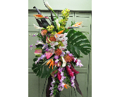 TROPICAL SPRAY in Woodbridge NJ, Floral Expressions