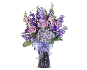 LAVENDER FIELDS in Gainesville, Florida, Floral Expressions Florist