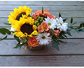 Sunny Day Bouquet in Crivitz, Wisconsin, Sharkey's Floral and Greenhouses