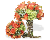 FULL OF WONDER in Gainesville FL, Floral Expressions Florist