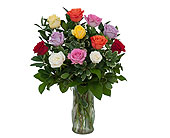 Dozen Roses - Mix it up! in Methuen MA, Martins Flowers & Gifts