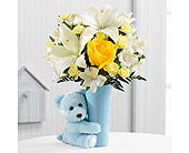 FTD Baby Boy Big Hug in Mississauga ON, Flowers By Uniquely Yours