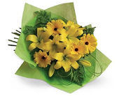 Yellow Sunshine Cut Flowers in Timmins ON, Timmins Flower Shop Inc.