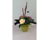 Cattail Creation in Cheshire CT, Cheshire Nursery Garden Center and Florist