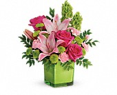 Teleflora's In Love With Lime Bouquet in Ruston LA, 2 Crazy Girls
