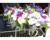 Custom in Marlboro, New Jersey, Little Shop of Flowers