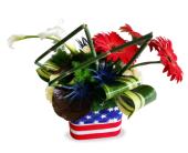 Stars and Stripes in Villa Park IL, Ardmore Florist