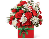 Holiday Cheer in Mississauga ON, Flowers By Uniquely Yours