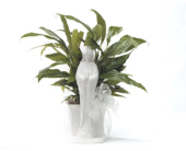 Virgin Mary Peace Lily Planter in Medicine Hat AB, Beryl's Bloomers