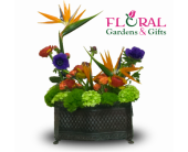 Tropical Tranquility in Palm Beach Gardens FL, Floral Gardens & Gifts